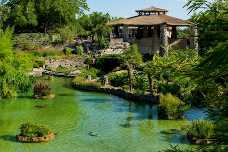 a japanese garden in san antonio