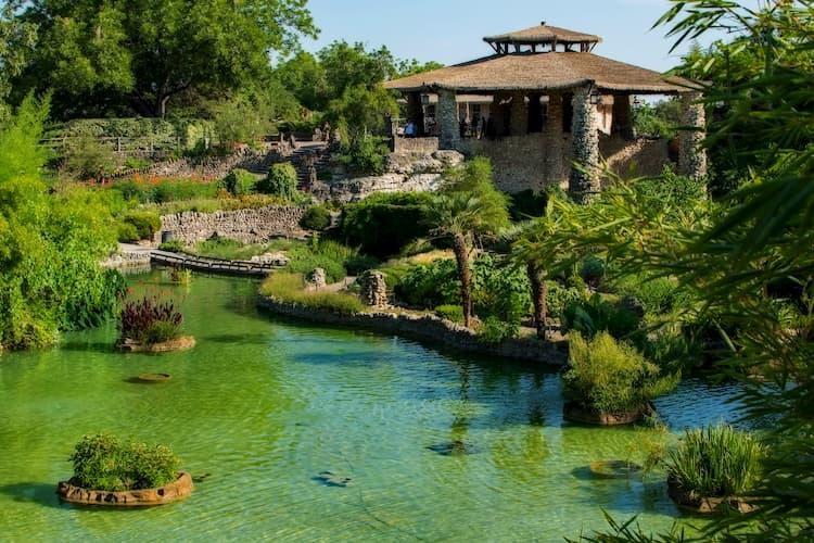 a calming pond in San Antonio's Japanese Tea Garden