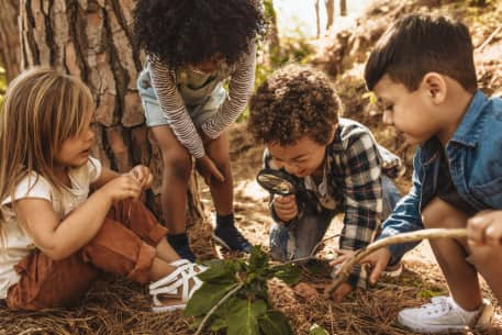 children use a magnifying glass to observe a plant in a nature center