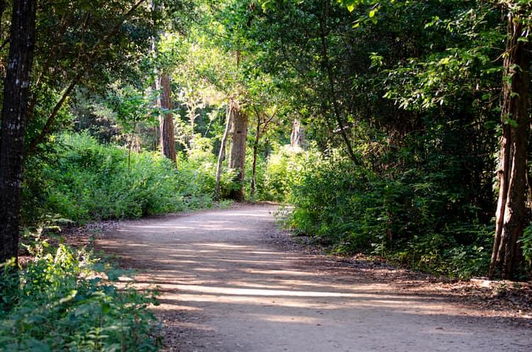 Houston Arboreteum
