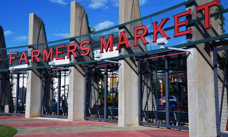 dallas farmers market weekend itinerary for longhorn charter bus